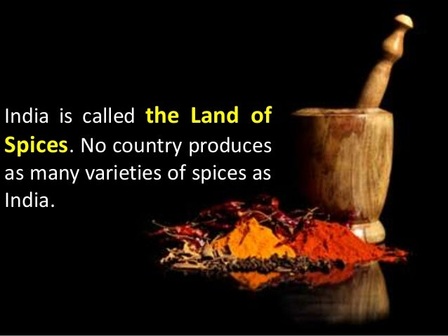 Interesting facts about indian food for City indian dining ltd t a spice trader