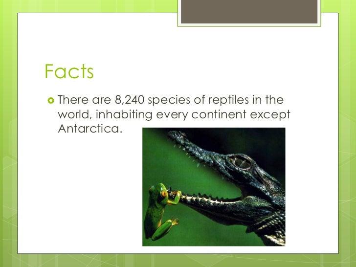 Interesting facts about vertebrates
