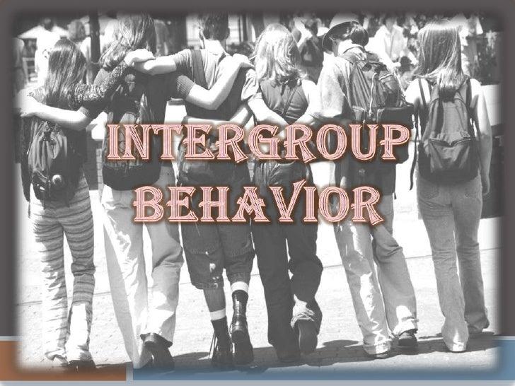Intergroup Behavior<br />