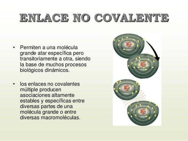 ENLACE NO COVALENTE • Permiten a una molécula grande atar específica pero transitoriamente a otra, siendo la base de mucho...