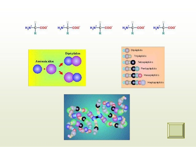 ENLACE DE HIDROGENO • Es una asociación molecular en la que existe una atracción dipolo –dipolo entre moléculas que poseen...