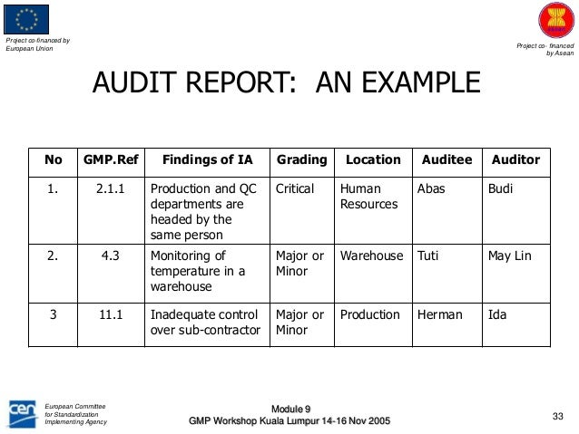 Sample Auditor Report  Audit Findings Template