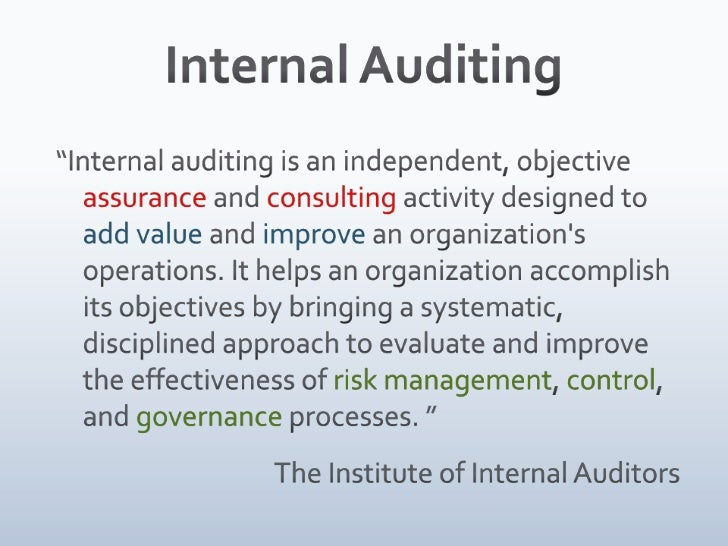 internal auditor roles