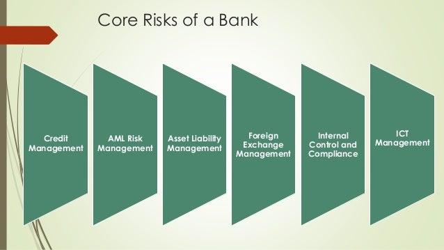 bank credit risk management