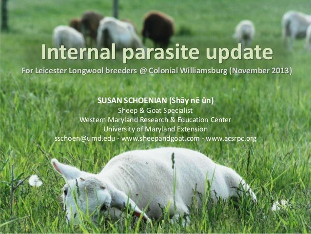 Internal parasite update For Leicester Longwool breeders @ Colonial Williamsburg (November 2013) SUSAN SCHOENIAN (Shāy nē ...