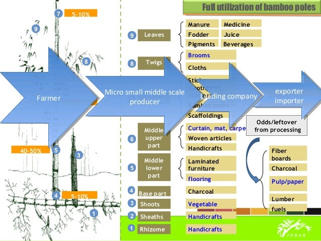 Global Bamboo Trade: Trends and Development