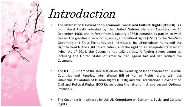the international covenant on economic social Follow-up to ireland's third examination under the international covenant on  economic, social and cultural rights in june 2015, the united nation's (un).