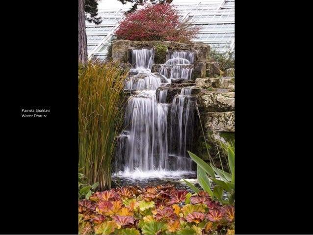 International Garden Photographer Of The Year Winners