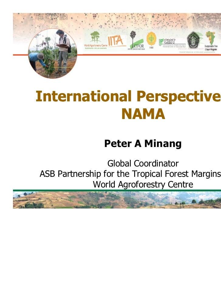International Perspectives on           NAMA                 Peter A Minang                    Global CoordinatorASB Partn...