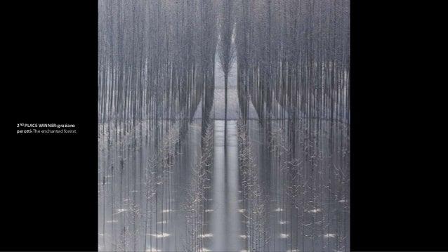 3RD PLACE WINNER:Samuel Feron-(untitled)