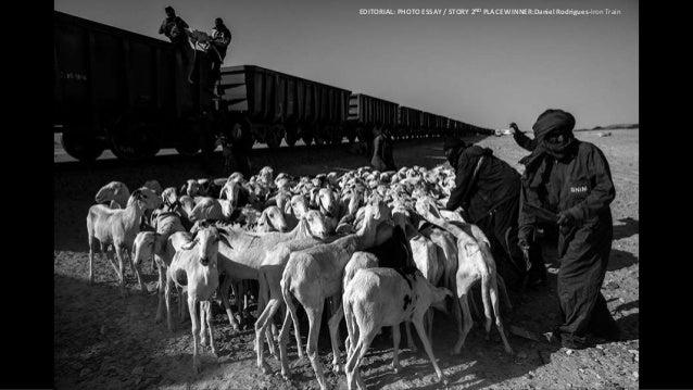3RD PLACE WINNER:Kristof Vadino-Refugee Odyssey