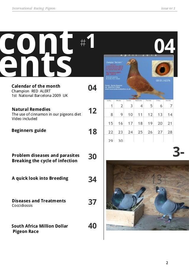International Racing Pigeon Magazine