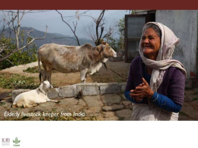 Celebrating International Women's Day 2016:  Quotes and photos associated with livestock
