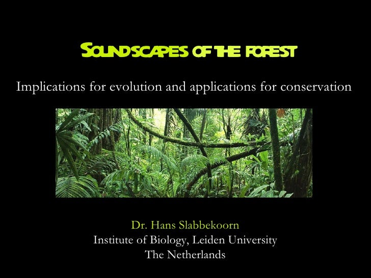 Soundscapes  of the forest Implications for evolution and applications for conservation Dr. Hans Slabbekoorn Institute of ...