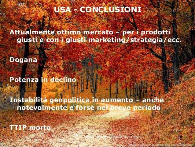 18Ing. D. Righetto – Padova, 03.11.2016 USA - CONCLUSIONI ● Attualmente ottimo mercato – per i prodotti giusti e con i giu...