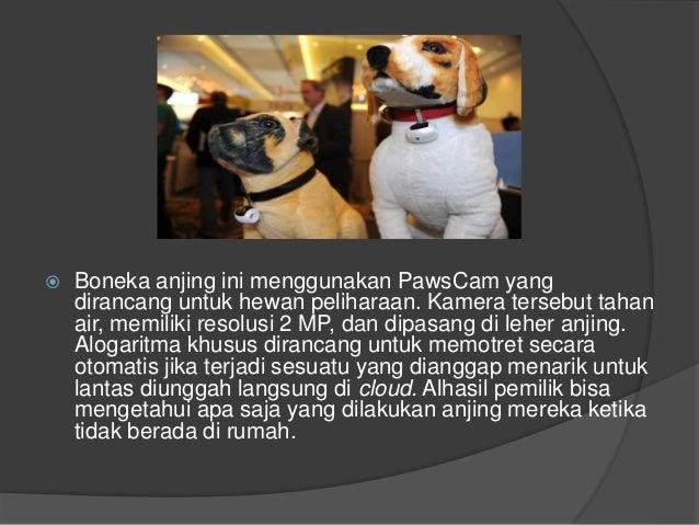  Boneka anjing ini menggunakan PawsCam yang dirancang untuk hewan peliharaan. Kamera tersebut tahan air, memiliki resolus...