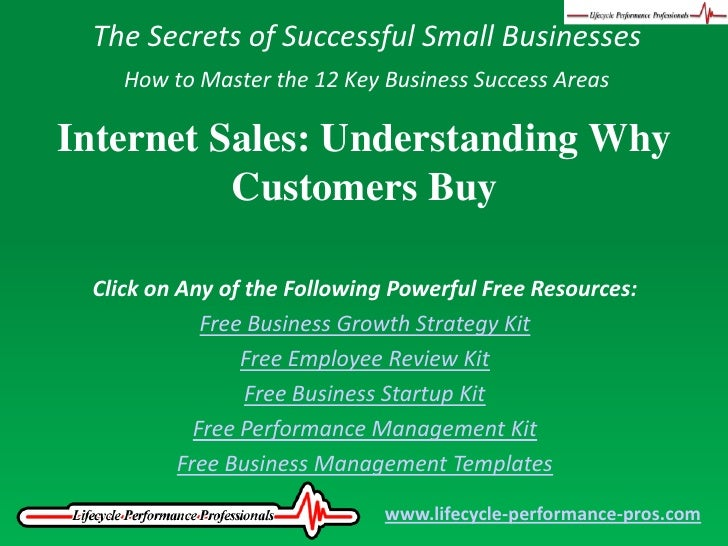 The Secrets of Successful Small Businesses<br />How to Master the 12 Key Business Success Areas<br />Internet Sales: Under...