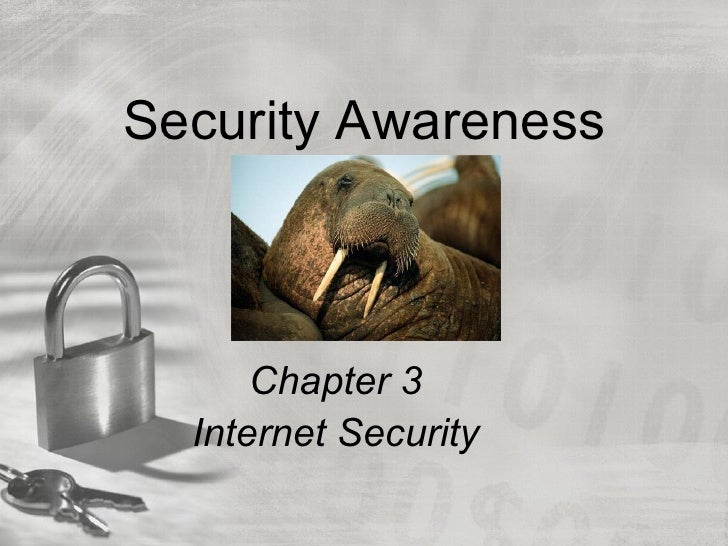 Security Awareness      Chapter 3  Internet Security