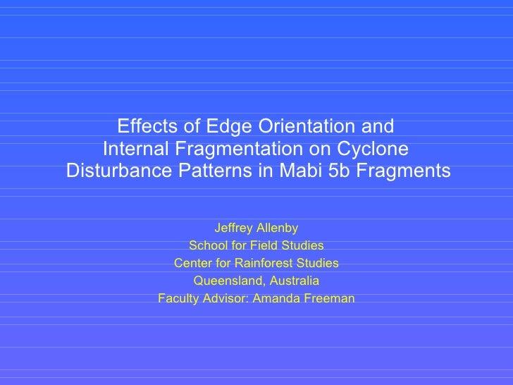 Effects of Edge Orientation and  Internal Fragmentation on Cyclone  Disturbance Patterns in Mabi 5b Fragments Jeffrey Alle...