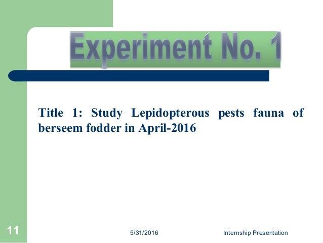 Title 1: Study Lepidopterous pests fauna of berseem fodder in April-2016 5/31/2016 Internship Presentation11