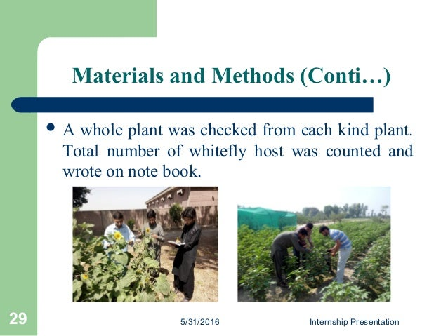 Materials and Methods (Conti…)  A whole plant was checked from each kind plant. Total number of whitefly host was counted...