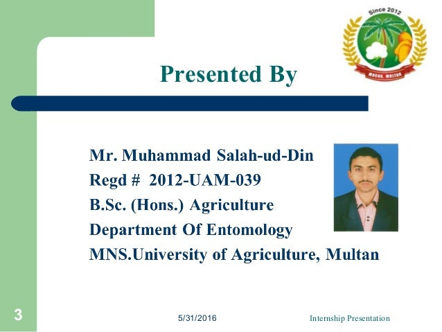 Presented By 5/31/2016 Internship Presentation3