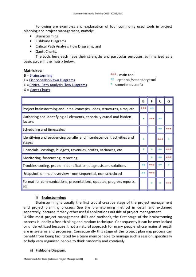 internship report 2015  summer internship