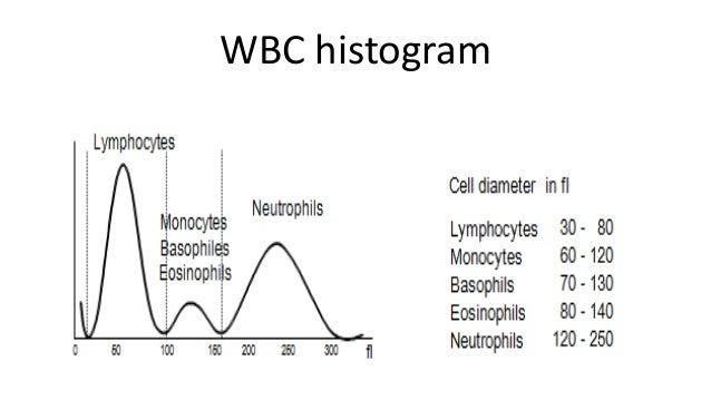 normal cbc diagram 9 bnm savic family de \u2022 Microcytic Anemia Algorithm normal cbc diagram wiring diagram rh 52 geschiedenisanders nl cbc lab cbc fishbone diagram