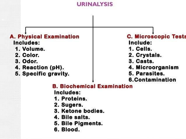 Urine Interpretation / Test / Analysis