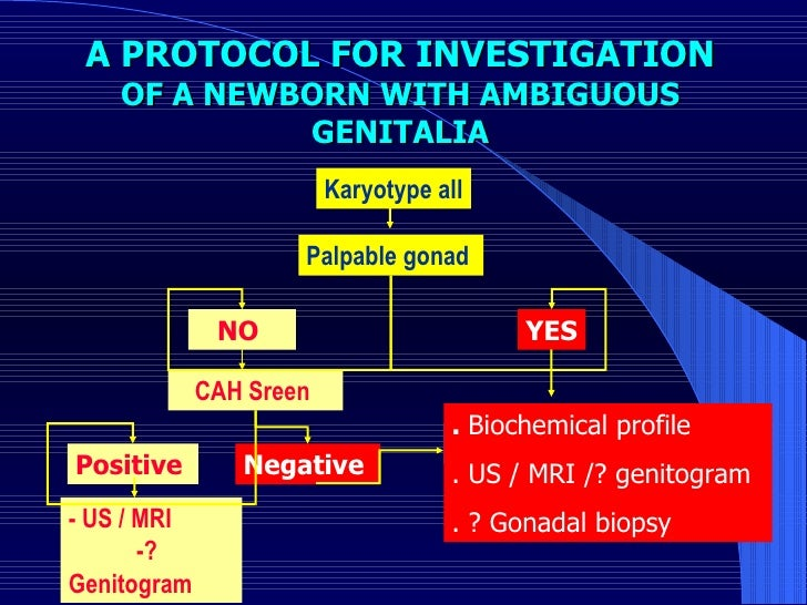A PROTOCOL FOR INVESTIGATION  OF A NEWBORN WITH AMBIGUOUS GENITALIA Karyotype all Palpable gonad  YES NO  CAH Sreen  Posit...