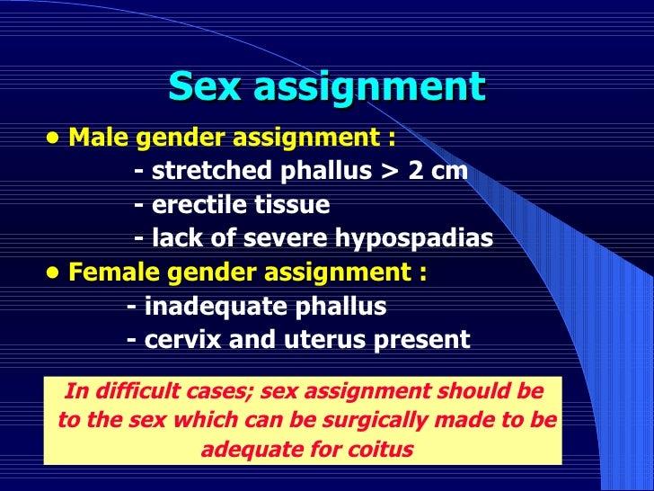 Sex assignment <ul><li>•  Male gender assignment : </li></ul><ul><li>- stretched phallus > 2 cm </li></ul><ul><li>- erecti...