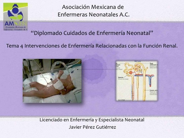 """Asociación Mexicana de                     Enfermeras Neonatales A.C.         """"Diplomado Cuidados de Enfermería Neonatal""""T..."""