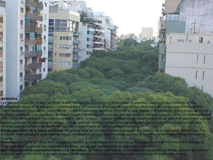 MEMORIA  Las plantas oxigenan, filtran y purifican el aire, disminuyen la polución y la densidad de esporas y bacterias qu...