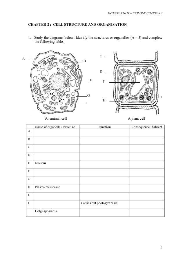 Intervensi bio Form 4 chapter 2