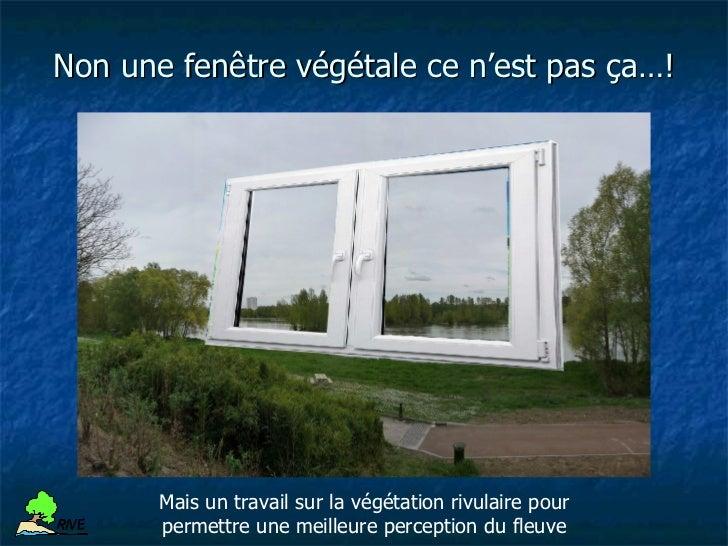 Entretien des berges de Loire à BloisR IV E                     Protection végétale de bergeR IV E                    Exem...