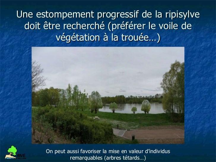Les chantiers « Loire et développement durable »     Mission Val de Loire / Caisse d'épargne Centre Val de Loire          ...