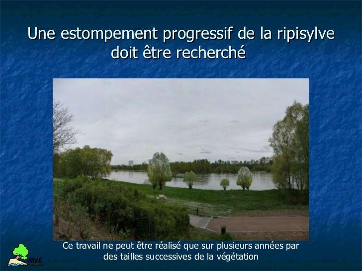 Les travaux réalisés   Les travaux réalisés dans le cadre du mécénat d'insertion de la Caisse   d'Epargne Centre-Val de Lo...