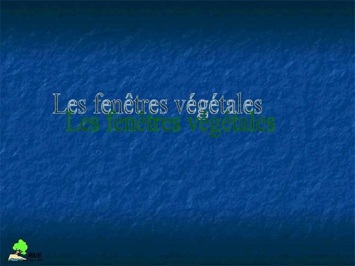 Les facteurs influant sur les méthodes de             stabilisation végétaleR IV E          Les matériaux mis en oeuvreR I...