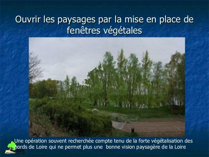Tressage (végétaux vivants)Application : stabilisationdu pied de bergeAvantages : rusticitéInconvénients : peu cheret faci...