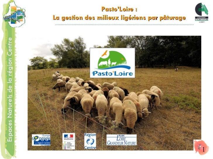 Pasto'Loire : La gestion des milieux ligériens par pâturage