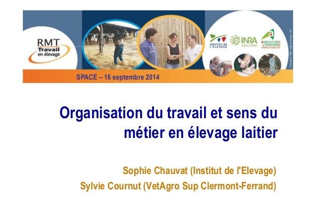 SPACE – 16 septembre 2014  Organisation du travail et sens du  métier en élevage laitier  Sophie Chauvat (Institut de l'El...