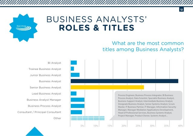 Interview 2014 - A Portrait of Business Analysis in South Africa