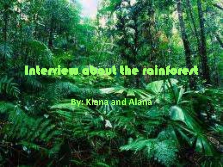 Interview about the rainforest<br />By: Kiana and Alana<br />