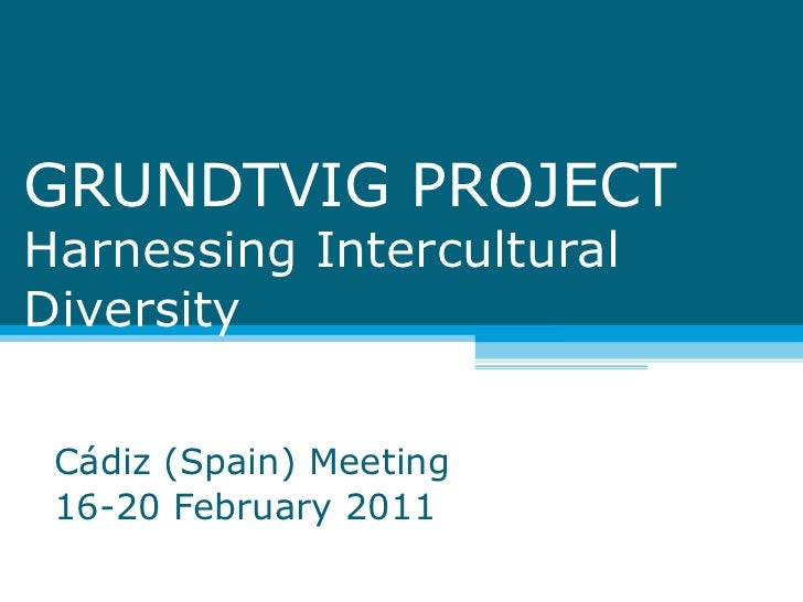 GRUNDTVIG PROJECT Harnessing Intercultural Diversity  Cádiz (Spain) Meeting 16-20 February 2011