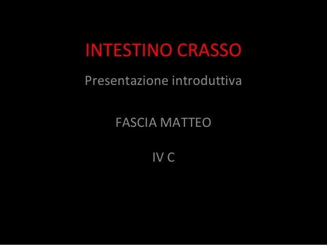 INTESTINO CRASSO Presentazione introduttiva FASCIA MATTEO IV C