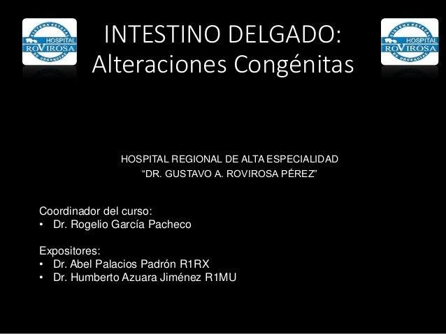 """INTESTINO DELGADO: Alteraciones Congénitas HOSPITAL REGIONAL DE ALTA ESPECIALIDAD """"DR. GUSTAVO A. ROVIROSA PÉREZ"""" Coordina..."""