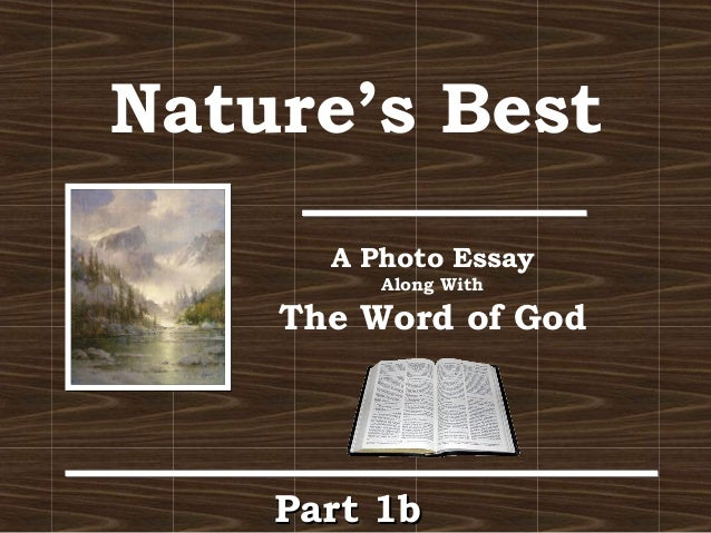 in the beginning god created liberal arts and humanities photo es  nature s best a photo essay along the word of god part 1bpart 1b