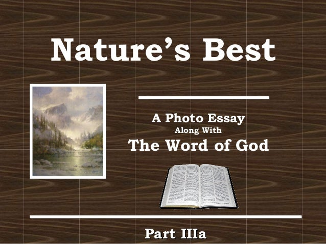 in the beginning god created a photo essay liberal arts and human  nature s best a photo essay along the word of god part iiiapart iiia