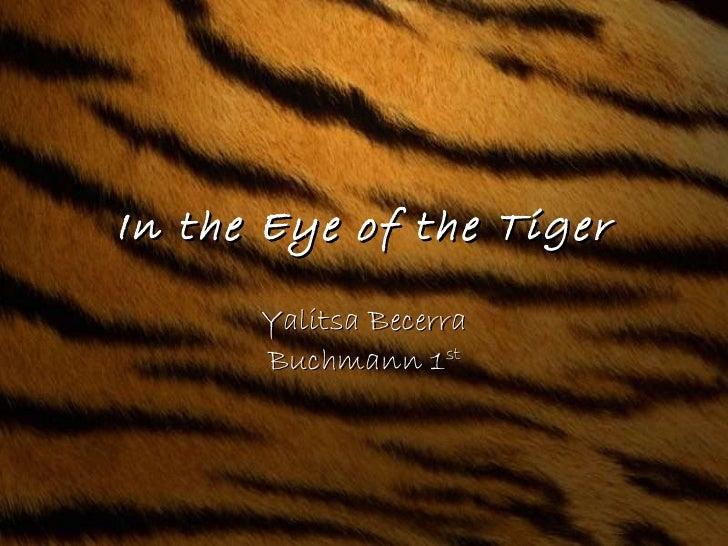 In the Eye of the Tiger Yalitsa Becerra Buchmann 1 st