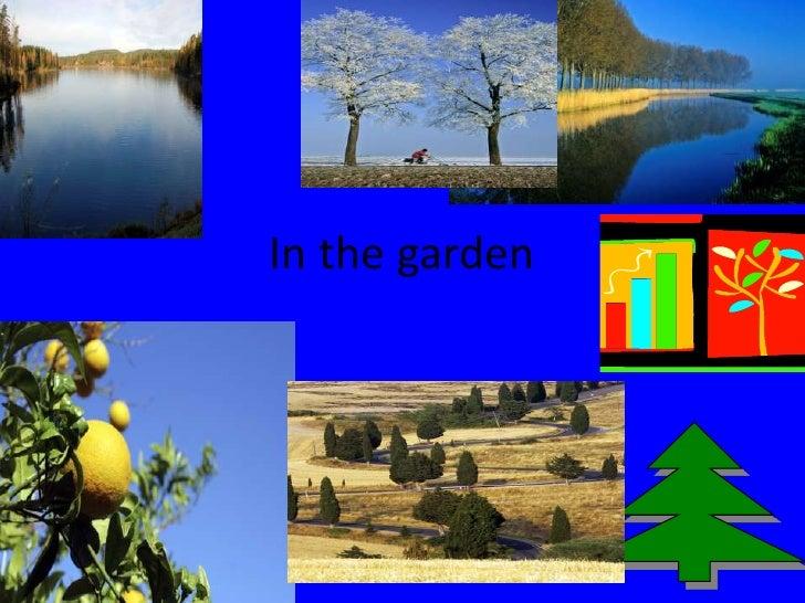 In the garden<br />